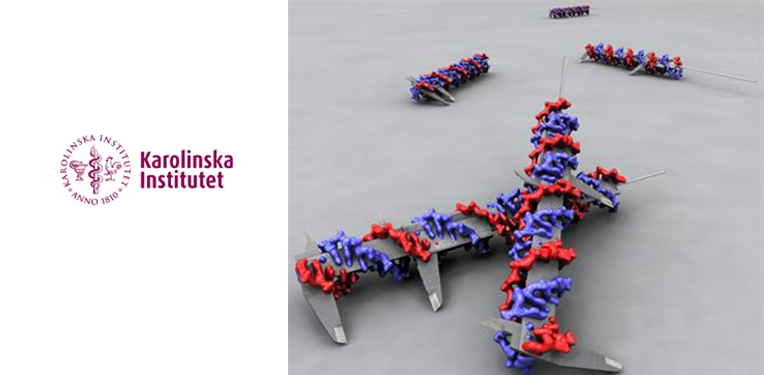 DNA origami