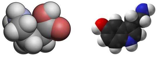 GABA and Serotonin
