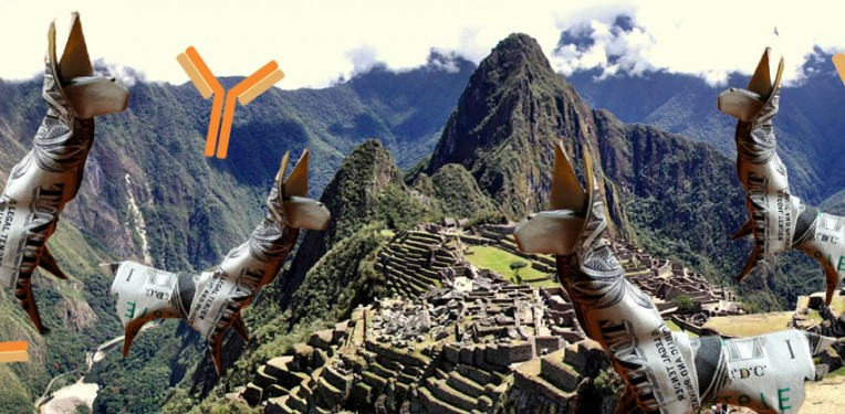 Machu Pichu! Built on with Origami Llamas (CC: Craigfoldsfives) and Monoclonal Antibodies