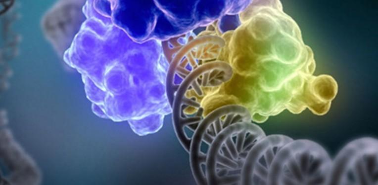 Proteros epigenetics 2