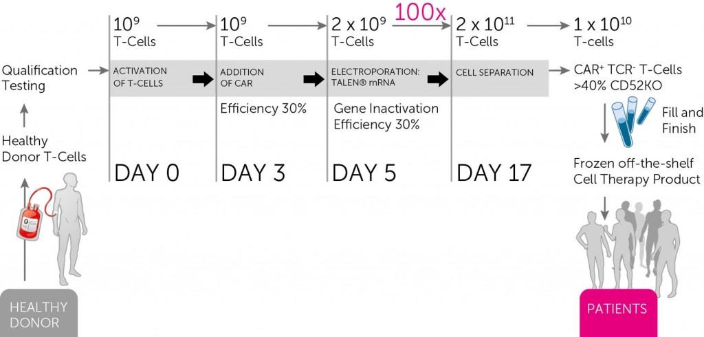 cart_cellectis_ucart_ultimate_biotech_cancer
