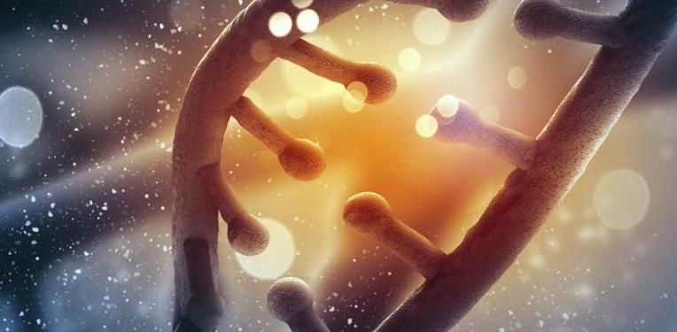 crispr_bayer_therapeutics_genetic_disease_joint_venture_london