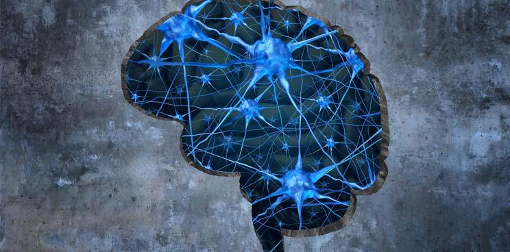 alzheimers_dementia_discovery_fund_takeda_weizmann_biogen_rodin