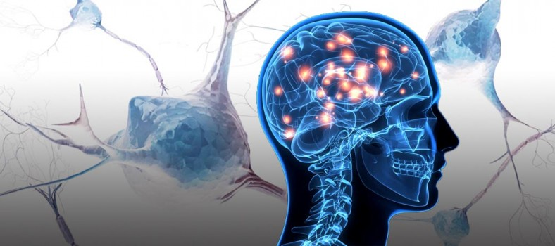 biogen_alzheimer_proteros_rodin_therapeutics_atlas_neurology