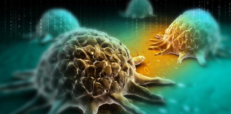 msd_avelumab_pdl1_immunooncology_pfizer_etinostat