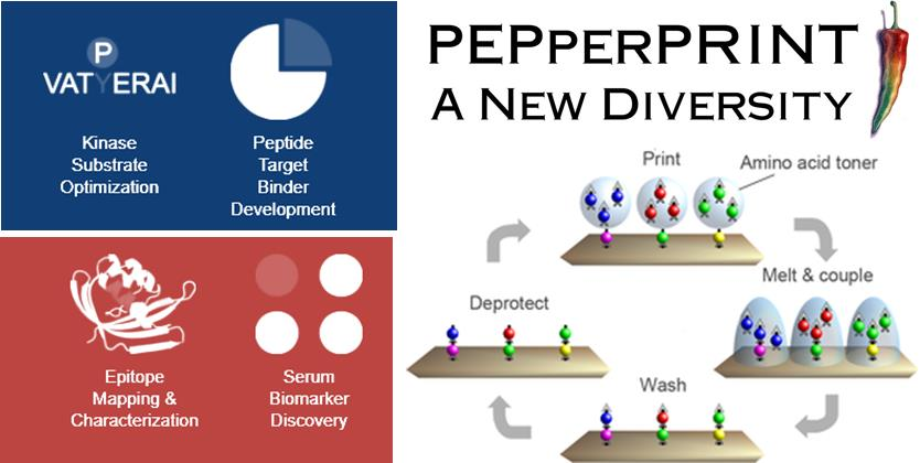 pepperprint_german_accelerator_life_science_boston_biotech_startup
