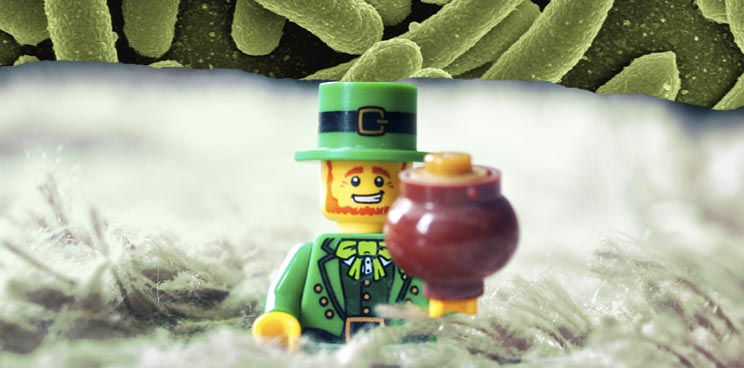 4d_pharma_microbiome_tucana_ucc_ibs_cork