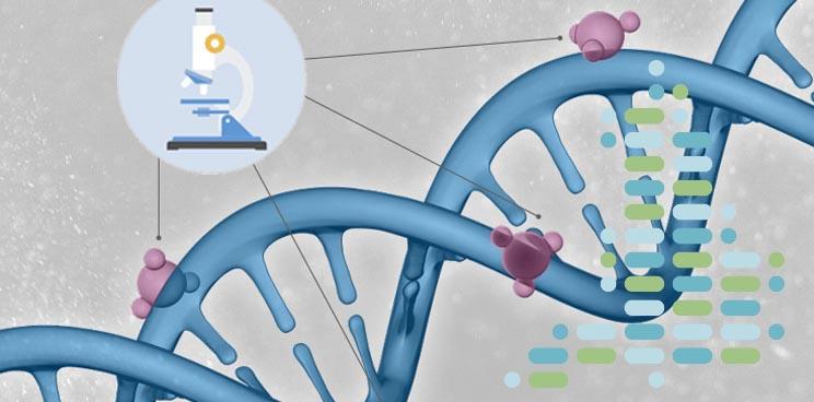 genomics_england_illumina_100_project_partner_uk