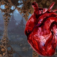 bionic_heart_patch_university_tel_aviv_tau_biomaterial_nanoelectronics_tissue_engineering_myocardial_infarction_heart_attack_nature_materials