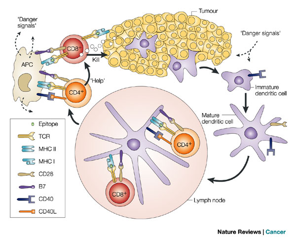 immuno-oncology_nature_reviews_cancer_250_immunotherapies_leiden_lumc_isa_pharmaceuticals