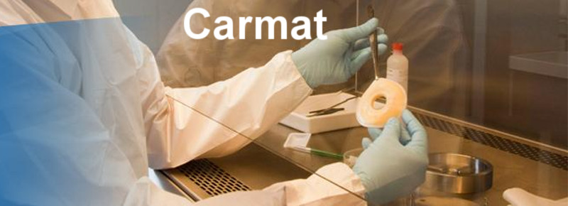 top_paris_biotech_carmat_artificial_heart