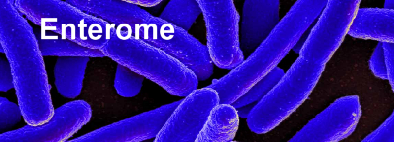top_paris_biotech_enterome_microbiome