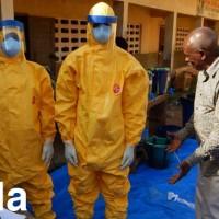 wellcome_trust_sanger_cambridge_Ebola_epidemic_quarantine_global_transmission