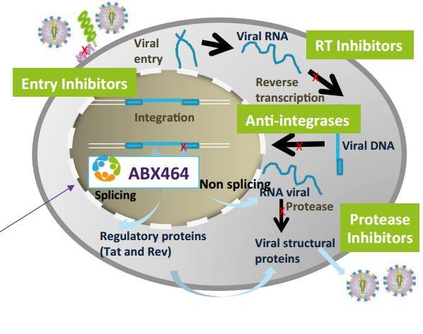 abivax_antiviral_platform_hiv_dengue