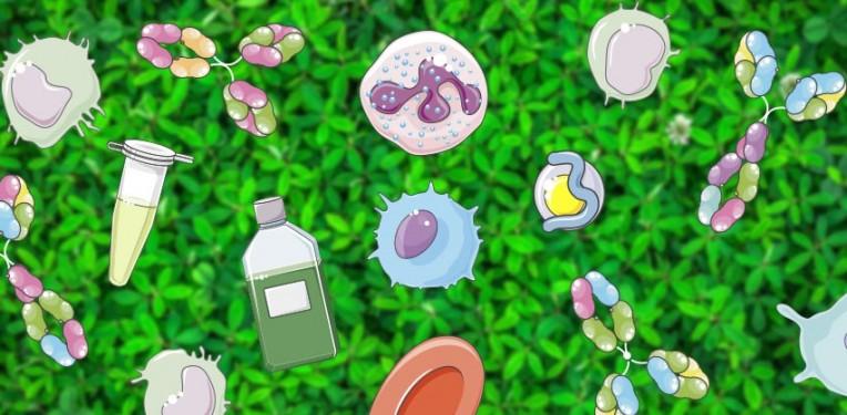 cell medimmune influenza a antibody biotech