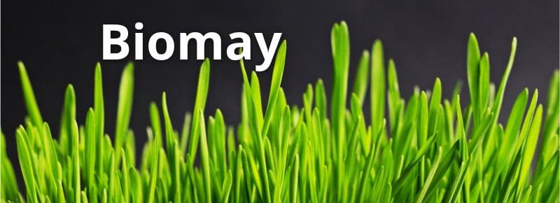 biotech vienna biomay allergy immunotherapy