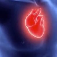 carmat_artificial_heart