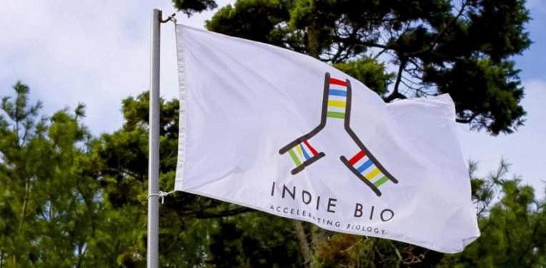 indiebio 2016 demo day synbio startups