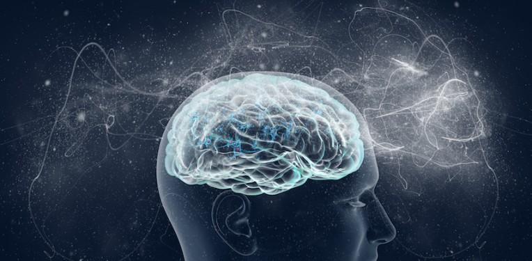 brain-by-vitstudio-featured-image