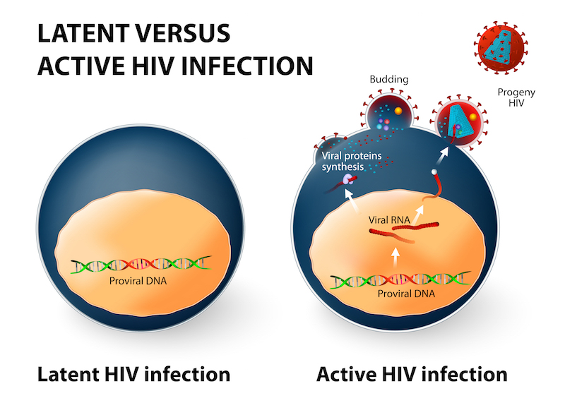 Figure. Latent versus active infections