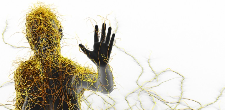 multiple-sclerosis-by-decade3d-anatomy-online-fi