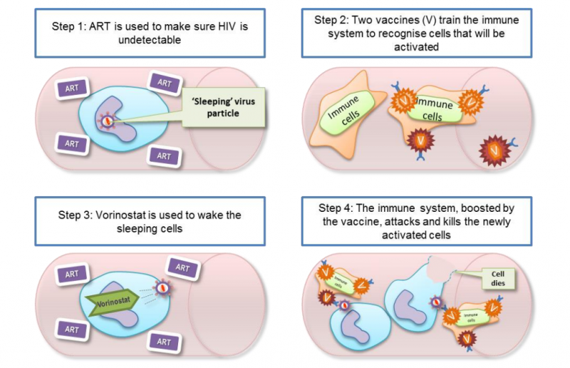 New HIV Cure Approach