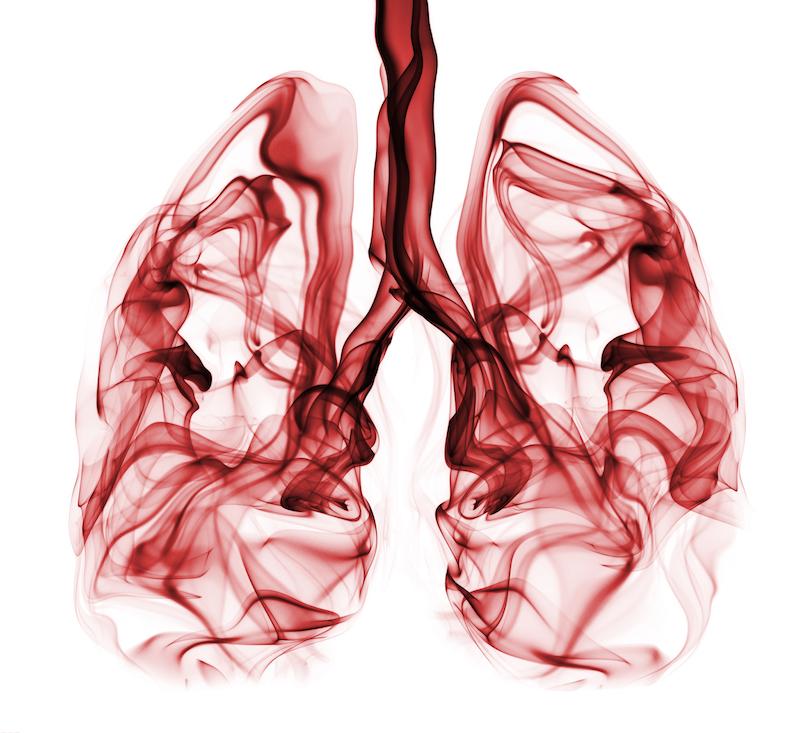 smoke-lungs-thomas-lauridsen-small
