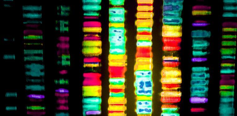 gene-sequencing-gio-tto-fi