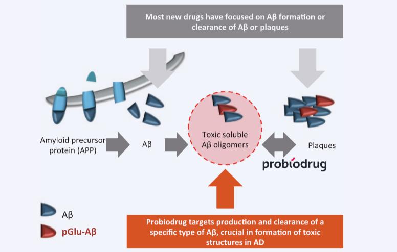 Probiodrug Alzheimers