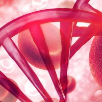 European Biotech Blood Cancer