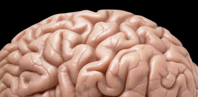 Eli Lilly Failure Alzheimers