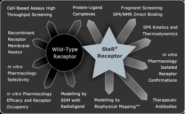 heptares therapeutics star gpcr receptor