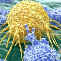 cell-medica-immunotherapy-cmd-003-ebv
