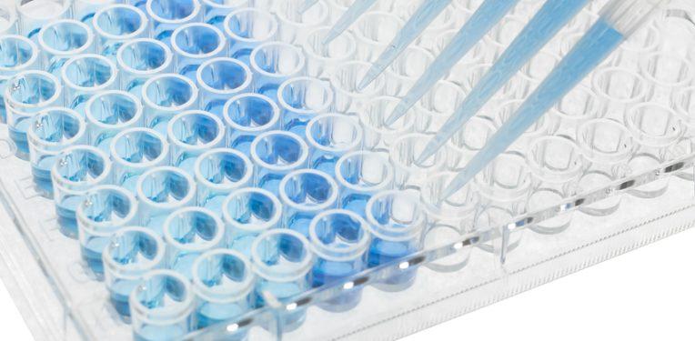 yumab-fully-human-antibodies