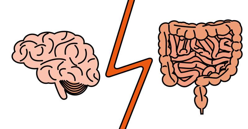 Microbiome-Gut-Brain-Axis