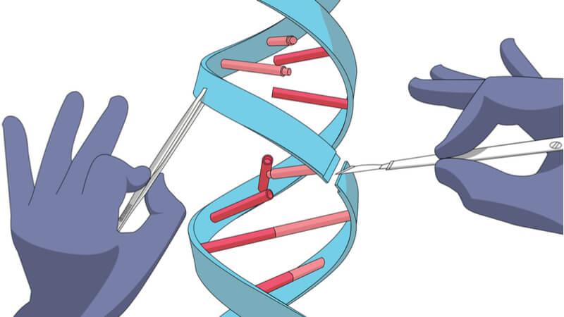 CRISPR-Gene Editing