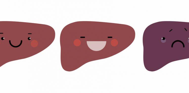 Genkyotex NOX enzyme liver fibrosis