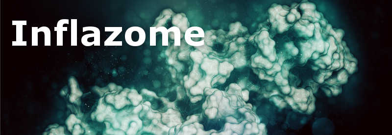biotech ireland inflazome