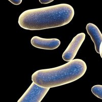 antibiotic-resistance-review-biotech