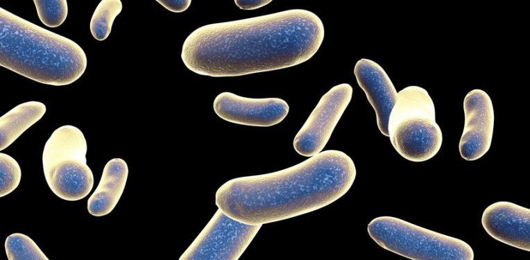 antibiotic-resistance-review-biotech