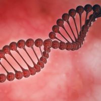Artios Pharma Masaryk University Cancer DNA Repair
