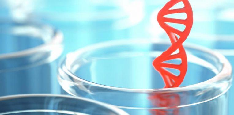 BioNTech mRNA Antibody Cancer RiboMAB