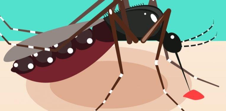 Themis-Chikungunya-Vaccine-Phase-i-ii