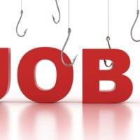 job cover 1
