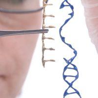 nightstarx blindness gene therapy