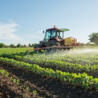Herbicide resistance kaiima basf