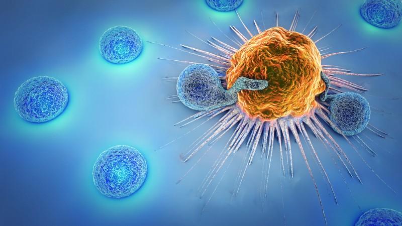 Novartis CTL019 FDA recommendation