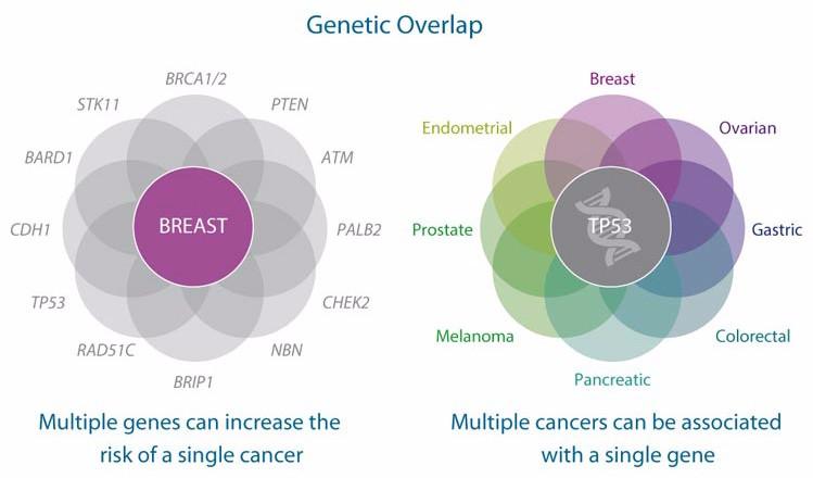 genome testing oncology myriad
