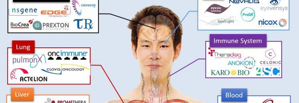 Infographic The Anatomy Of European Biotech