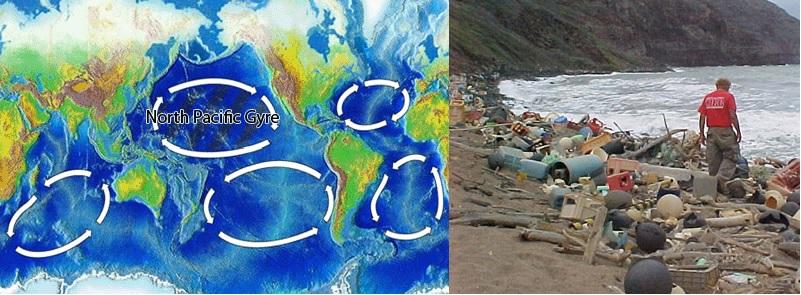 bioplastics biodegradable plastics pacific garbage patch